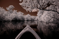 Infrared image while kayaking in Commodore Creek, Tarpon Bay