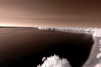 Infrared image from observation tower along Wildlife Drive